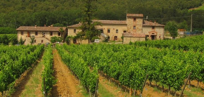 Migliori tour enogastronomici in Toscana: una vacanza tra vino, arte e natura